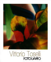 vittoriotoselli.it